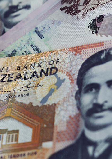 NZ DIVIDEND APPRECIATION FUND