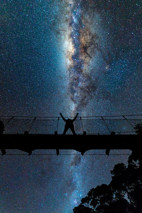 Carol Comer: Girl on the Bridge