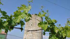 A l'origine … un moulin