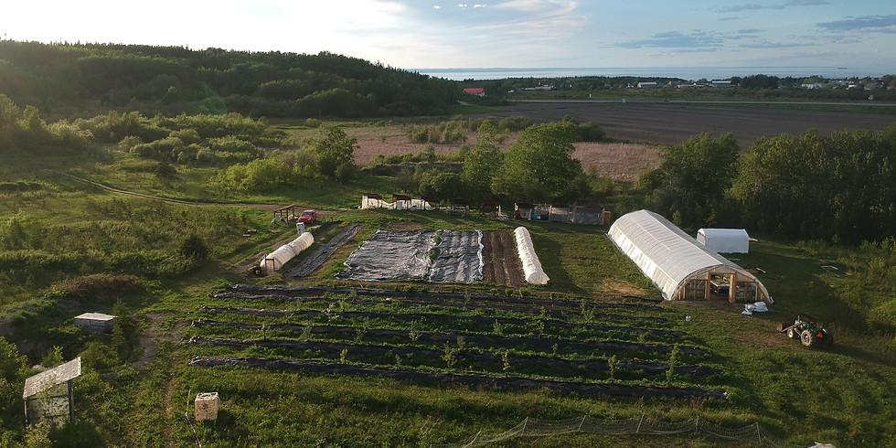 *Formation* Initiation à la permaculture