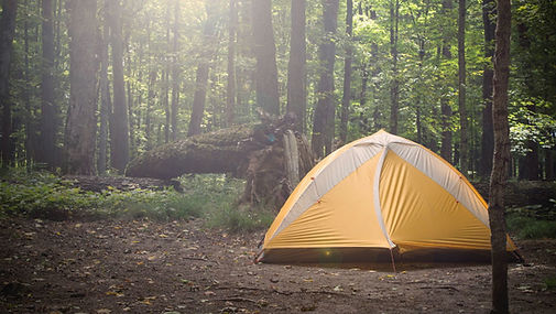 camping-tent-forest.jpg
