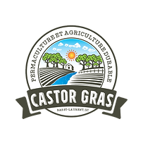 Castor Gras_transparent et blanc.png