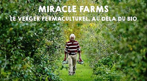 Jardin - foret, permaculture