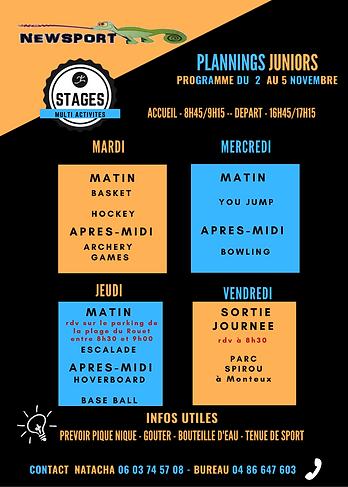 stage junior automne 2021.png