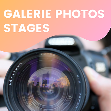 GALERIE PHOTOS STAGES.png