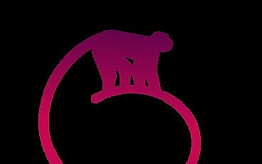 Macaques Evenementiel Agence Cocktail Traiteur Toulouse