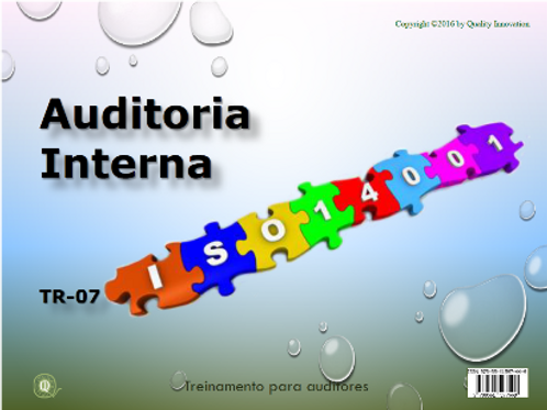 Auditoria interna-ISO 14001