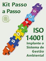 14001 CAPA KIT.jpg