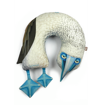 Piquero patas azules (Ref. SI.NP.005)