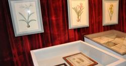 Redouté Museum