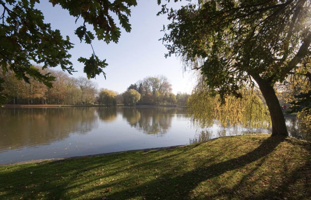 Vrijbroek Park