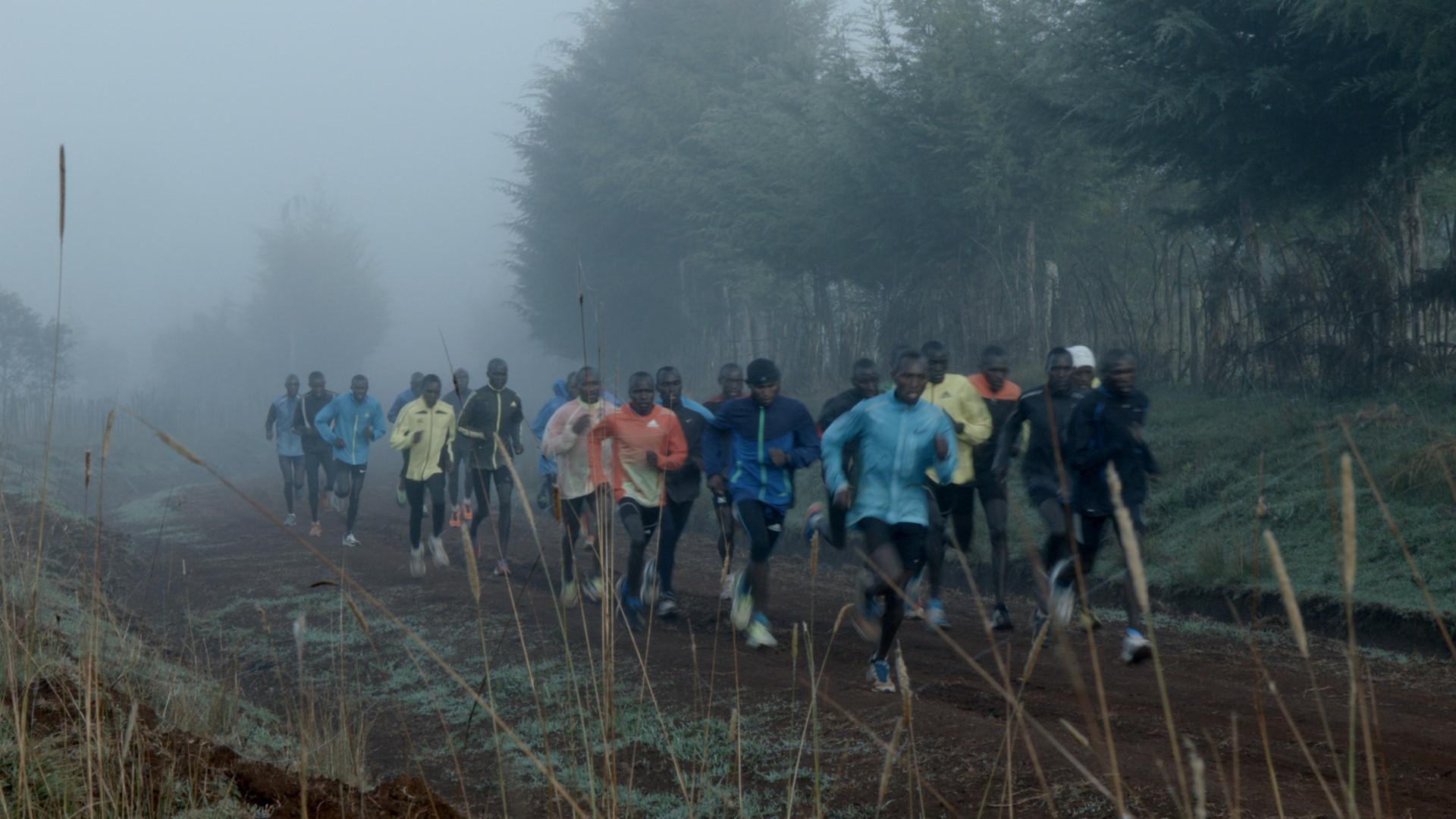 TLD_Runners.jpg