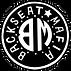 cropped-BSM-Logo-3.png