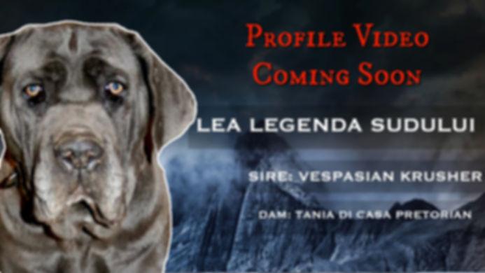 LEA-Profile-Thumbnail-coming-soon.jpg