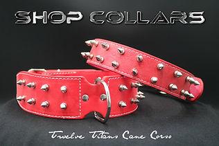 shop-collars.jpg