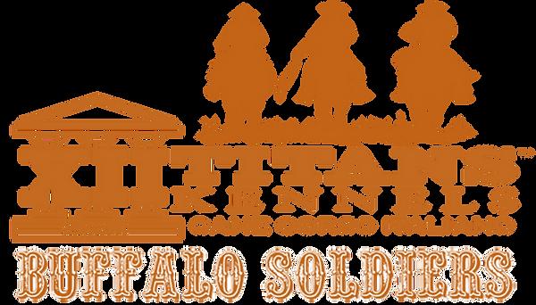 19LTA-Buffalo-Logo-3.png