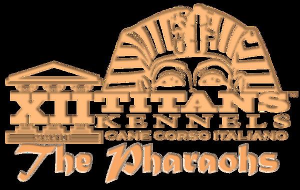 pharoah-logo gold-bevel-w-name.png