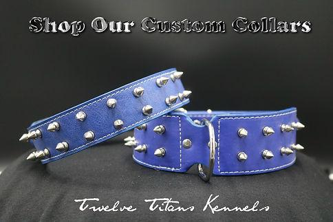 shop-collars-model-v1.jpg