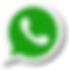 simbolo whatsaapp.png