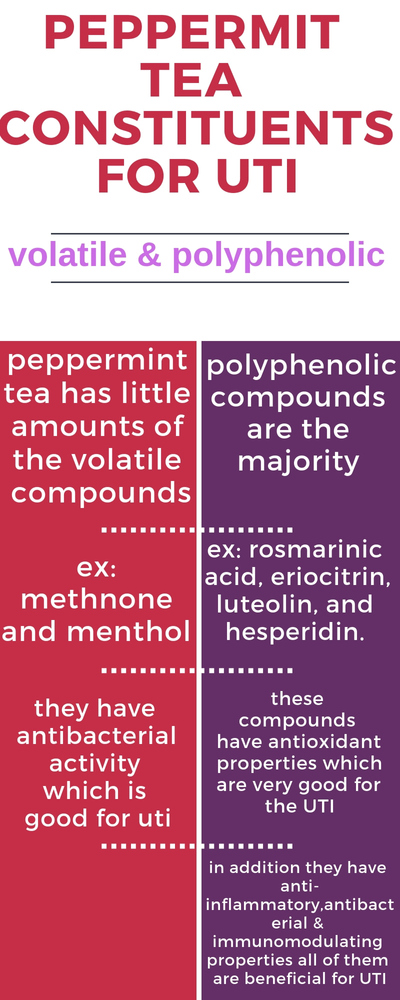 Peppermint tea for UTI