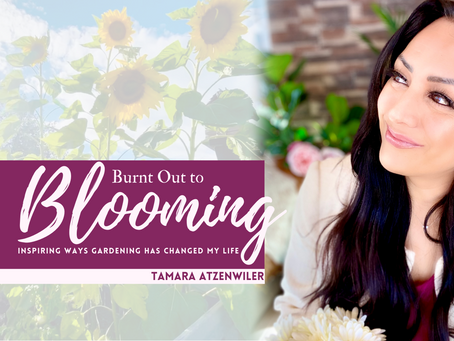 Burnt Out to Blooming: Inspiring Ways Gardening has Changed my Life