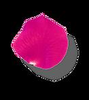 Rose Petal 5.png