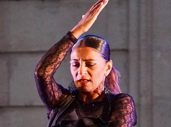 flamenco (5).jpg
