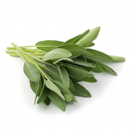 Fresh Herbs Sage 50g