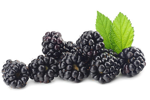 ENGLISH BLACKBERRIES 125GM PUNNETS