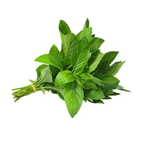 Fresh Herbs Mint 50g