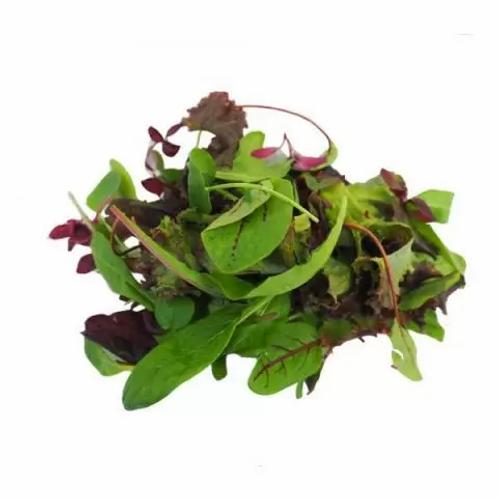 Mixed Baby Leaf Salad Washed 500g