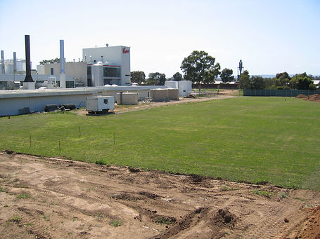 Coopers Brewery Oval 1 - resized.jpg