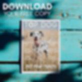 Top Dog ad.jpg