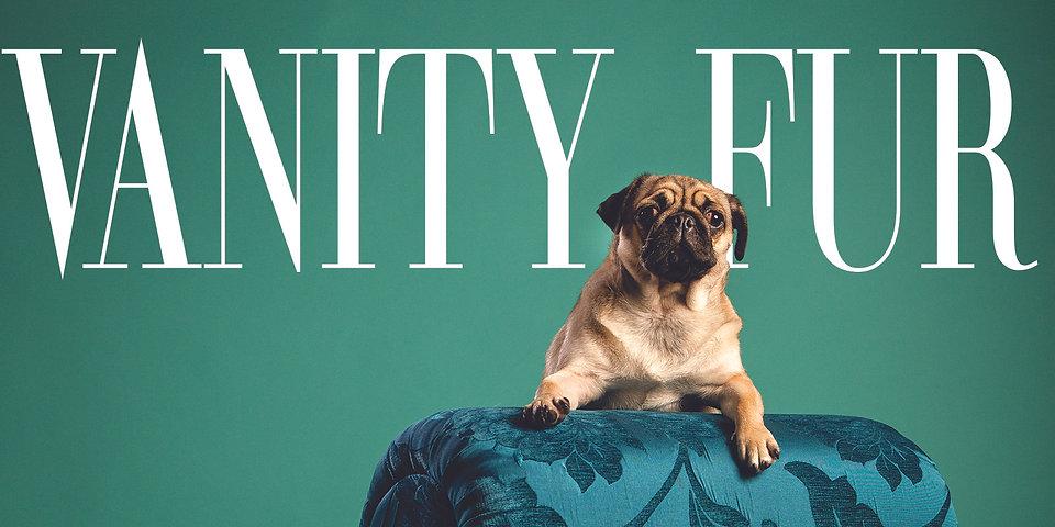 Vanity Fur Landing Page image.jpg
