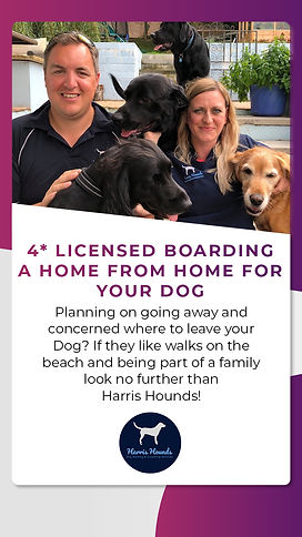 Harris Hounds App Slide 3.jpg