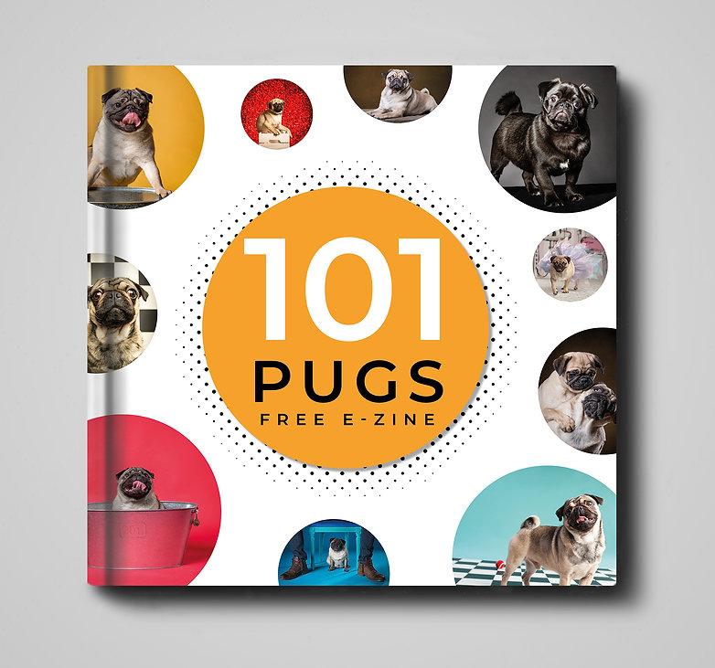 101 pugs ebook ad.jpg