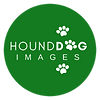 Hound Dog Images Logo small PNG.png