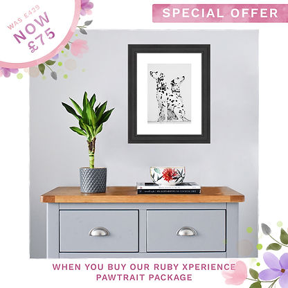 Ruby Special Offer Dog Mother's Day Sale