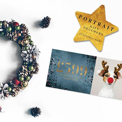 Christmas Sapphire Pawtrait Voucher
