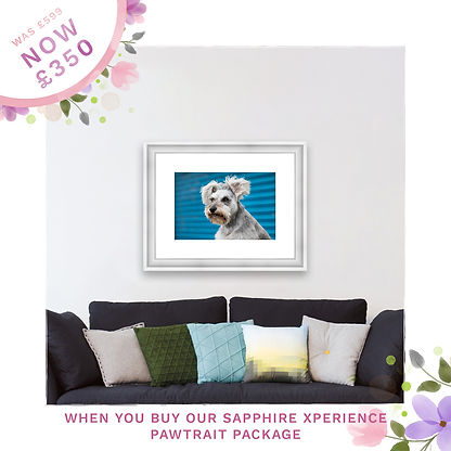 Sapphire Dog Mother's Day Sale Ads frame