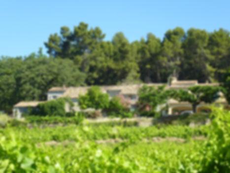 Vignoble Art Mas Visan vins biologiques vallée du rhône cdr villages visan