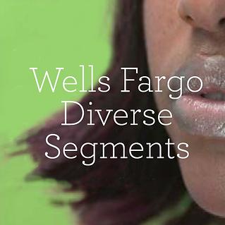 WF-Diverse-Segments.png