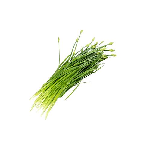 新鲜韭菜花/捆