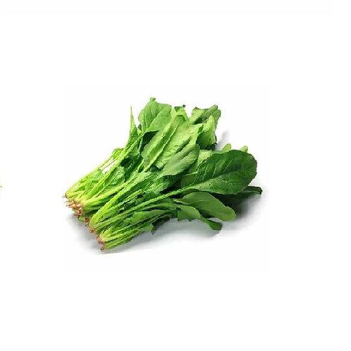 A级菠菜袋装不封口(有头)