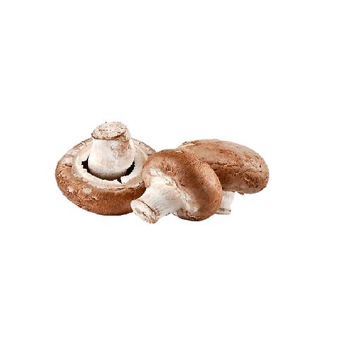 咖啡色蘑菇