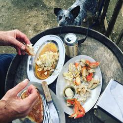 Lunch break at Hog Island with Buck