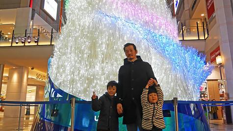 神戸ハーバーランドumie  ツリー