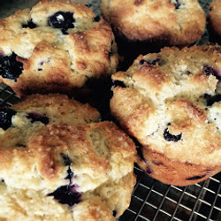 Farmhouse, Gilbert Blueberry Muffins