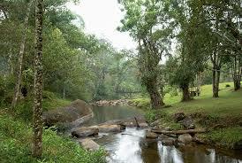 Rio Bonito de Cima