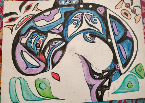 This drawing was inspired by the indigenous teachings of the Haida people. Orcas are known as a strong spiritual animal; it is often referred as the traveller of the seas and has a very important place in their culture. I made this drawing with the coaching of a young Haida women with whom I had the pleasure to share a meal. In my drawing, the orca is crying blood to symbolize the hurt and the threats that endanger this species. One of their major threats is noise pollution and if this type of pollution is found in high intensity, it can lead to internal organ damage which can be indicated by bleeding from the ears and the eyes resulting in a painful slow death.   Submitted by: Jennifer Blackaller Ruiz
